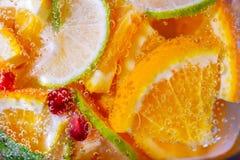 Ультрамодная картина с цитрусовыми фруктами и мятой лимонада как backgro Стоковые Фото