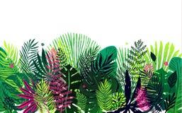 Ультрамодная картина с экзотической ладонью выходит на белую предпосылку Иллюстрация вектора ботаническая, элемент дизайна для Стоковая Фотография RF