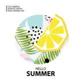 Ультрамодный тропик и предпосылка лимона также вектор иллюстрации притяжки corel Стоковые Изображения