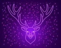 Ультра фиолетовые неоновые олени, вектор Стоковая Фотография RF