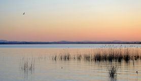 Умбрия, Италия, ландшафт озера Trasimeno на заходе солнца стоковое изображение