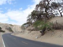 Умирает дорога Стоковая Фотография RF