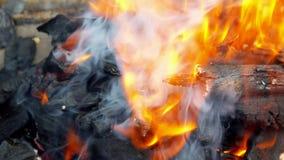 Умирая тлеющие угли в камине, горящей древесине в камине, горячем месте огня вполне древесины и огне сток-видео