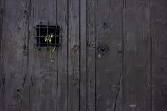 Умирая цветок помещенный на решетке старой деревенской двери стоковое изображение rf