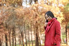 Умная женщина осени телефона говоря на черни в падении Стоковые Изображения RF