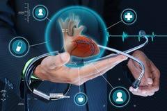 Умная рука показывая человеческие сердце и стетоскоп стоковые изображения
