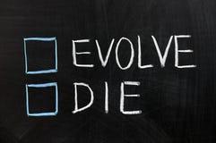 умрите эволюционируйте Стоковые Фотографии RF