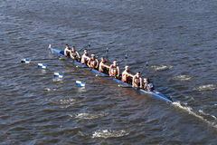Университет Коннектикута участвует в гонке в голове коллежа Eights ` s людей регаты Чарльза Стоковые Фотографии RF