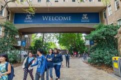 Университет Мельбурна в Австралии Стоковое Изображение