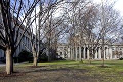 университет парка cambridge Стоковая Фотография