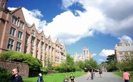 Университет Сиэтл Вашингтона Стоковое Фото
