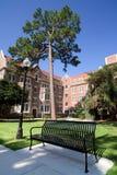 университет фасада общей спальни двора Стоковое Изображение