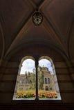 Университет штата Калифорнии Стоковое Фото