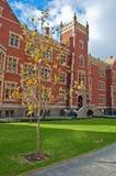 университет adelaide стоковое изображение rf