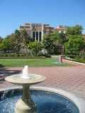 университет california южный Стоковое Изображение RF