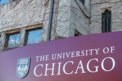 университет chicago Стоковое Фото