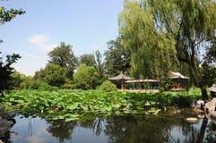 Университет Tsinghua Стоковые Фото