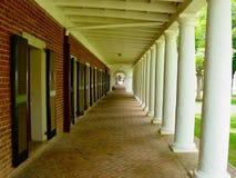 университет virginia стоковое фото