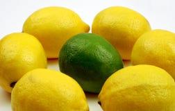 уникальность известки лимонов Стоковое Фото