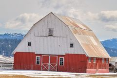 Уникально красный и белый амбар расположенный на ферме Айдахо с снегом внутри Стоковая Фотография RF