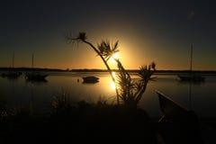 Уникально восход солнца Стоковое Фото