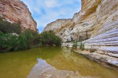 Уникально каньон Ein Avdat стоковые фото