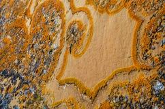Уникально картина лишайника на утесе Стоковое Изображение RF