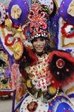 Уникально костюмы с другой темой seraong Стоковое Изображение