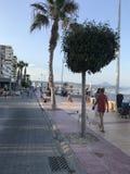 Уникально парк, пляж, лето, плавать в порте Аликанте Стоковое фото RF