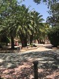 Уникально парк, пляж, лето, плавать в порте Аликанте Стоковые Изображения RF