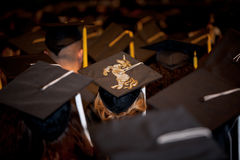 Уникально студент-выпускник Стоковое фото RF