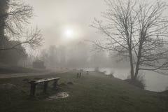 Унылое драматическое туманное падение осени весны ландшафта леса Стоковое Фото