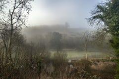 Унылое драматическое туманное падение осени весны ландшафта леса Стоковые Изображения RF