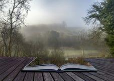 Унылое драматическое туманное падение осени весны ландшафта леса Стоковая Фотография