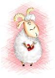 унылые овцы Стоковое фото RF