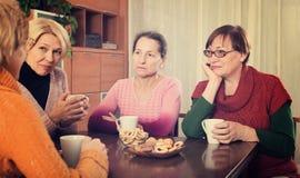 Унылые старшие женские друзья стоковые изображения rf
