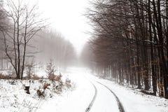 Унылый ландшафт дороги зимы Стоковые Изображения