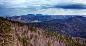 Унылый, ландшафт осени Стоковое фото RF