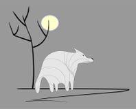 Унылый волк Стоковое фото RF