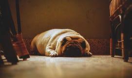 Унылый и спокойный Стоковая Фотография RF
