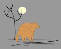 Унылый кот имбиря Стоковые Изображения RF