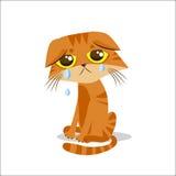 Унылый плача кот alien кот шаржа избегает вектор крыши иллюстрации Плача кот Meme Сторона кота Стоковые Фото