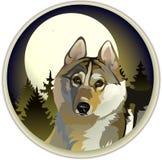 Унылый уединённый волк бесплатная иллюстрация