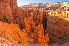 Уолл-Стрит, каньон NP Bryce стоковое изображение rf