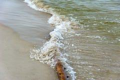 Упаденное дерево покрытое с волнами моря стоковое фото rf