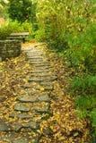 Упаденные листья аккумулируют на шагах каменных лестниц Стоковые Изображения