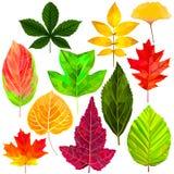 Упаденные листья установленные в низкий поли стиль Иллюстрация вектора
