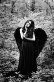 Упаденный ангел с черными крылами Стоковые Изображения RF