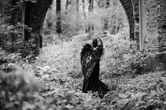Упаденный ангел с черными крылами Стоковое Изображение