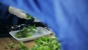 Упаковка листьев мяты в контейнер Поставщики еды сток-видео